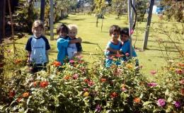 Nosso Jardim!!